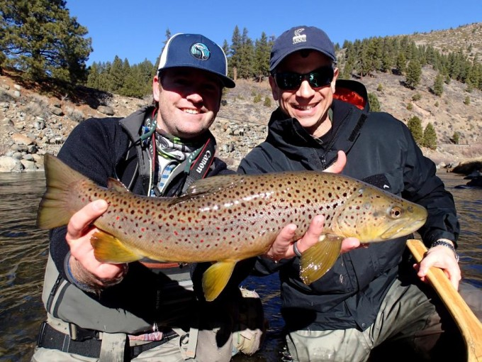 https://mattheronflyfishing.com/wp-content/uploads/2013/03/Big-brown.jpg