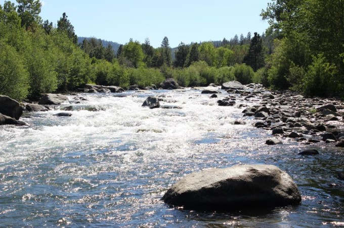 https://mattheronflyfishing.com/wp-content/uploads/2013/03/Truckee-River-Lake-Tahoe-Fly-Fishing-Guide-Trips-10.jpg