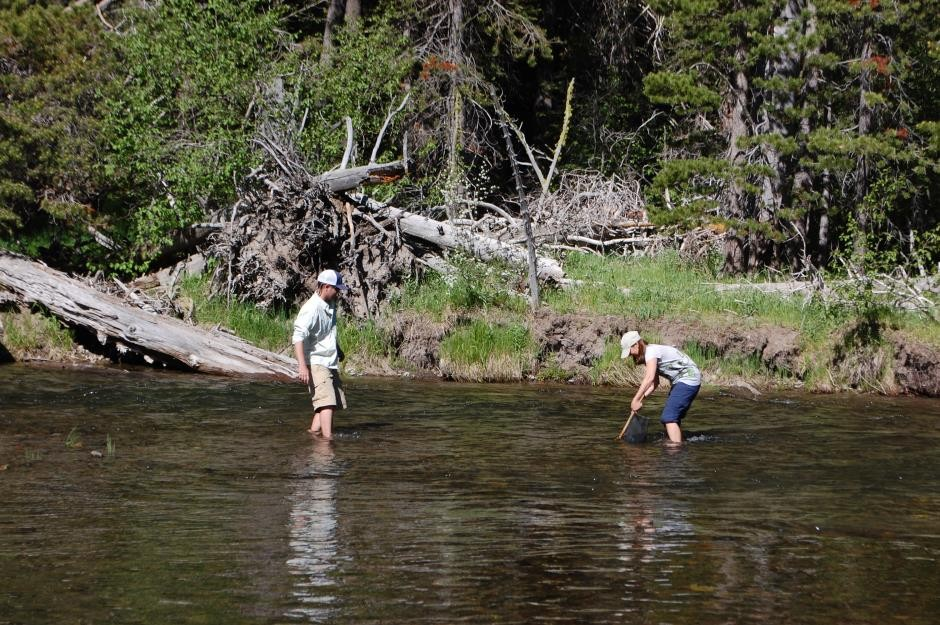 https://mattheronflyfishing.com/wp-content/uploads/2013/03/Truckee-River-Lake-Tahoe-Fly-Fishing-Kids-10.jpg